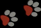 PawPaw Taxology Logo